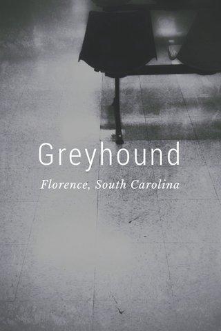 Greyhound Florence, South Carolina