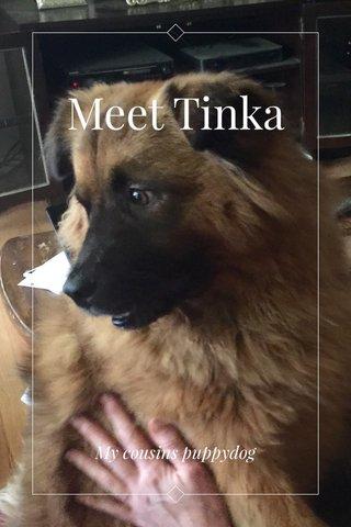 Meet Tinka My cousins puppydog