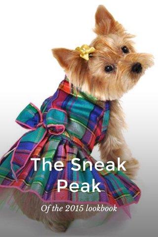The Sneak Peak Of the 2015 lookbook
