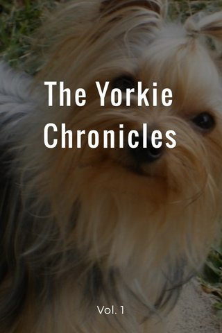The Yorkie Chronicles Vol. 1
