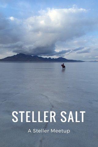 STELLER SALT A Steller Meetup