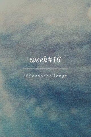 week#16 365dayschallenge