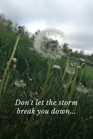 Don't let the storm break you down...