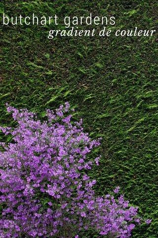 butchart gardens gradient de couleur