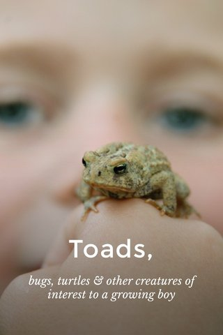Toads, bugs, turtles & other creatures of interest to a growing boy