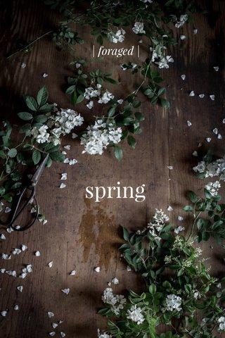 spring | foraged |