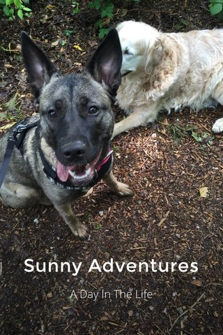 Sunny Adventures A Day In The Life