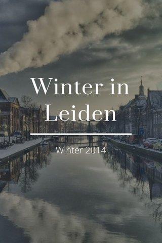 Winter in Leiden Winter 2014