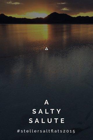 A SALTY SALUTE #stellersaltflats2015