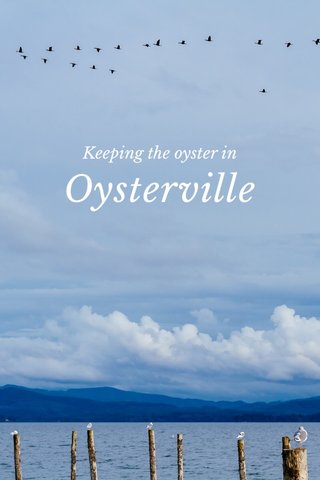 Oysterville Keeping the oyster in