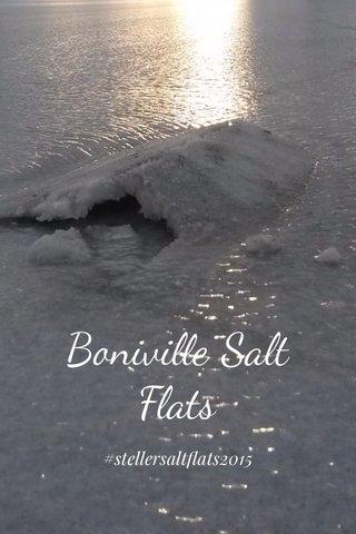 Boniville Salt Flats #stellersaltflats2015