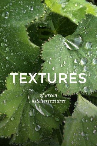 TEXTURES of green #stellertextures