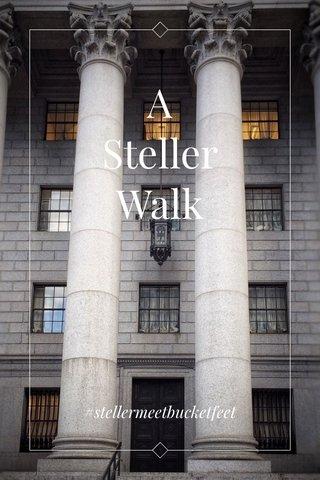 A Steller Walk #stellermeetbucketfeet