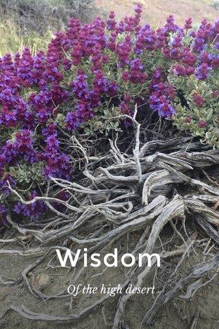 Wisdom Of the high desert
