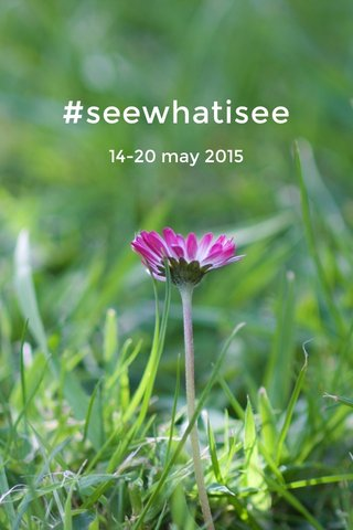 #seewhatisee 14-20 may 2015