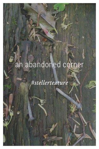 an abandoned corner #stellertexture