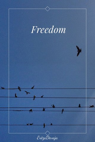 Freedom ErëzaDevaja