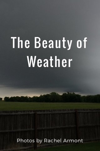 The Beauty of Weather Photos by Rachel Armont