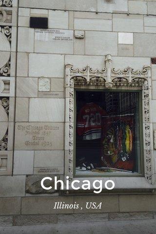 Chicago Illinois , USA