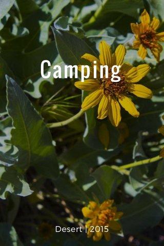 Camping Desert   2015