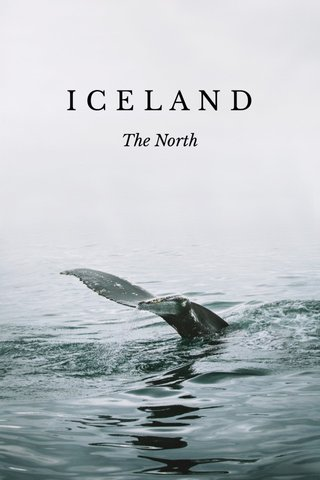 ICELAND The North