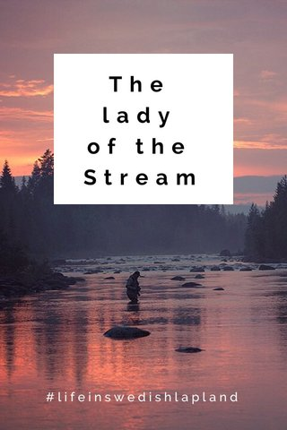 The lady of the Stream #lifeinswedishlapland