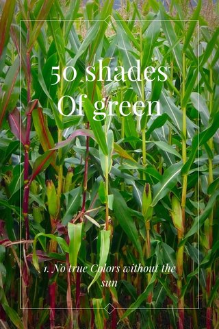 50 shades Of green 1. No true Colors without the sun