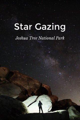 Star Gazing Joshua Tree National Park