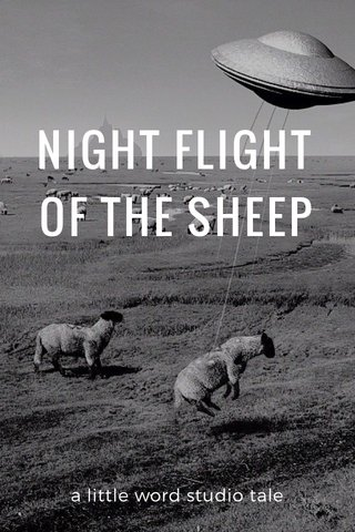NIGHT FLIGHT OF THE SHEEP a little word studio tale