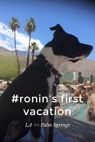 #ronin's first vacation LA >> Palm Springs