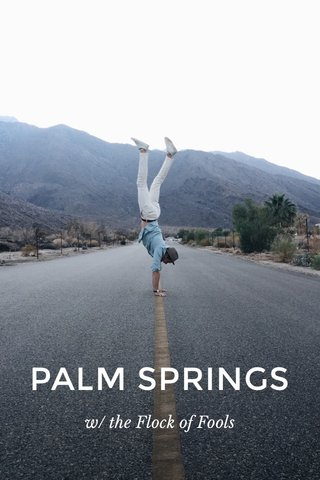 PALM SPRINGS w/ the Flock of Fools