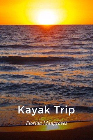 Kayak Trip Florida Mangroves