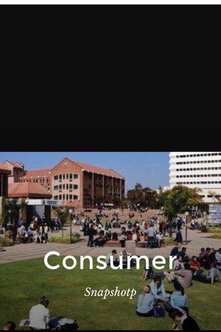 Consumer Snapshotp