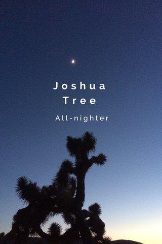 Joshua Tree All-nighter