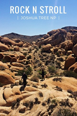 ROCK N STROLL | JOSHUA TREE NP |