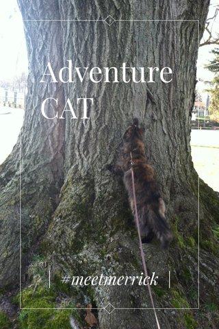 Adventure CAT | #meetmerrick |