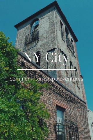 NY City Summer Internship Adventures