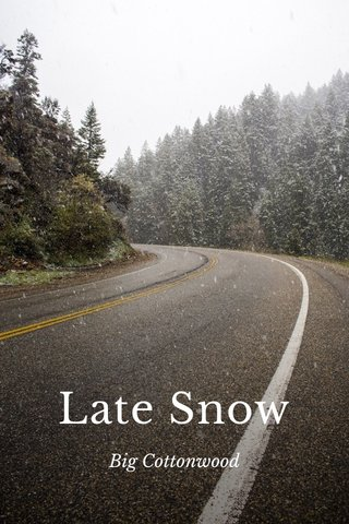 Late Snow Big Cottonwood