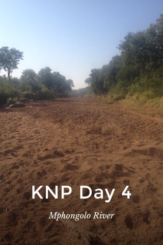 KNP Day 4 Mphongolo River