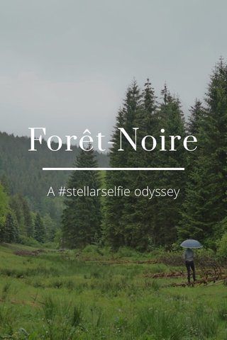 Forêt-Noire A #stellarselfie odyssey