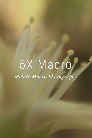 5X Macro Mobile Macro Photography