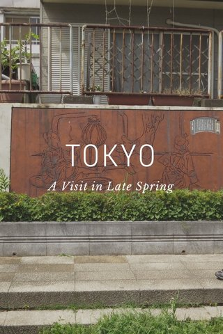 TOKYO A Visit in Late Spring