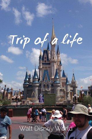 Trip of a life Walt Disney World