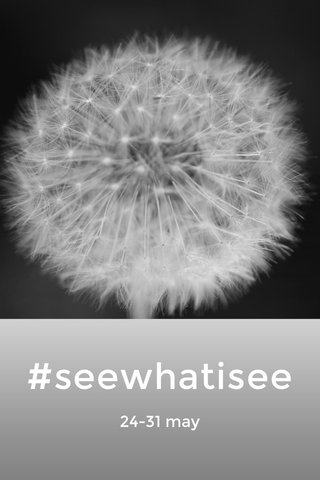 #seewhatisee 24-31 may