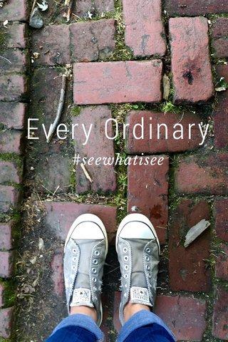 Every Ordinary #seewhatisee