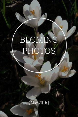BLOMING PHOTOS { May 2015 }