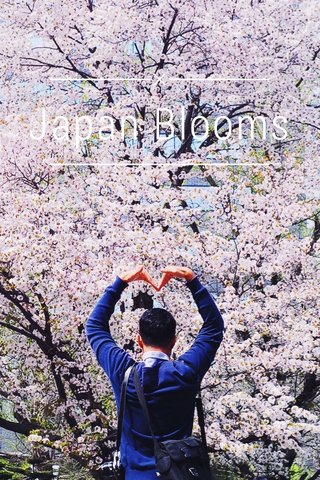 Japan Blooms