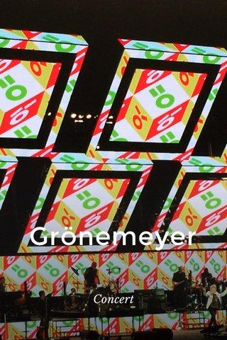Grönemeyer Concert