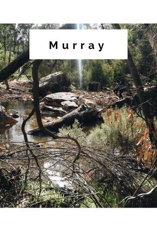 Murray SUBTITLE