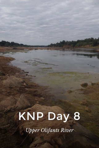 KNP Day 8 Upper Olifants River
